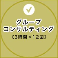 グループコンサルティング《3時間×12回 3ヶ月》